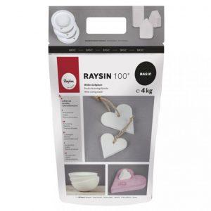 Raysin 100 Gießpulver – 4 kg