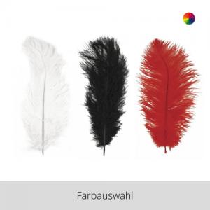 Straußenfeder – Farbauswahl